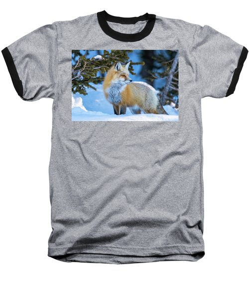 The Snow Beauty Baseball T-Shirt