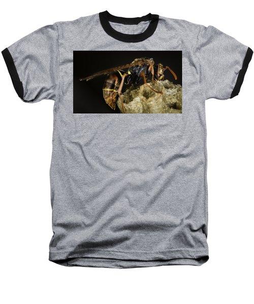 The Wasp Baseball T-Shirt