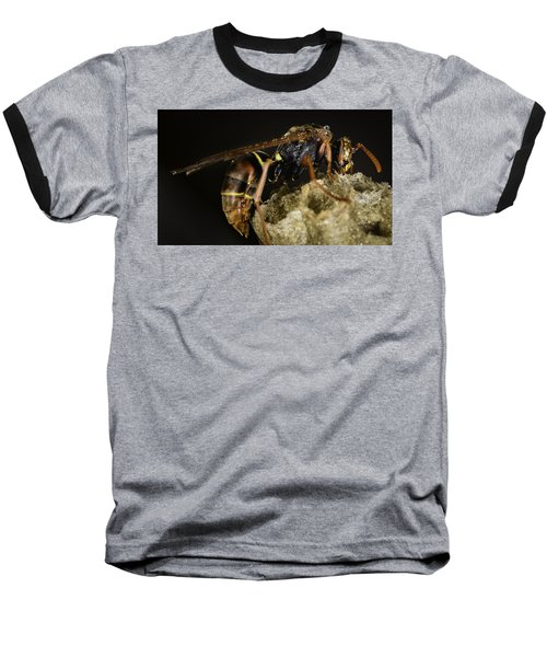 The Wasp Baseball T-Shirt