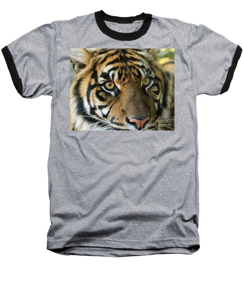 Tiger Baseball T-Shirt