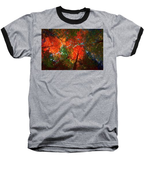 Tree Tops Baseball T-Shirt by David Stasiak