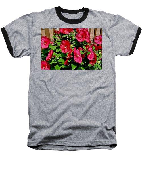 Tropical Red Hibiscus Bush Baseball T-Shirt by Marsha Heiken
