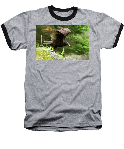 Baseball T-Shirt featuring the photograph Turkey Vulture by Mircea Costina Photography