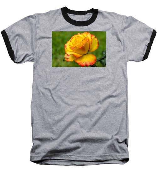 Two Toned Rose  Baseball T-Shirt