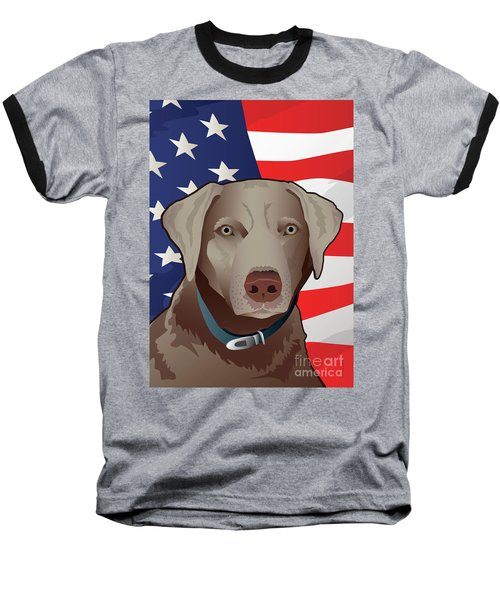 Usa Silver Lab Baseball T-Shirt