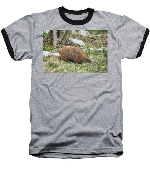 Baseball T-Shirt featuring the photograph Visitor  by Vicky Tarcau