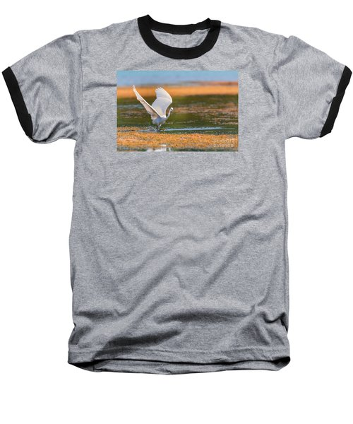Wading Baseball T-Shirt by Jivko Nakev