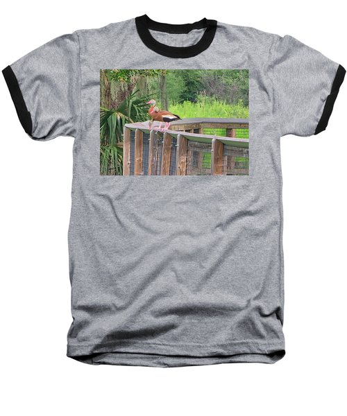Whistling Ducks Baseball T-Shirt
