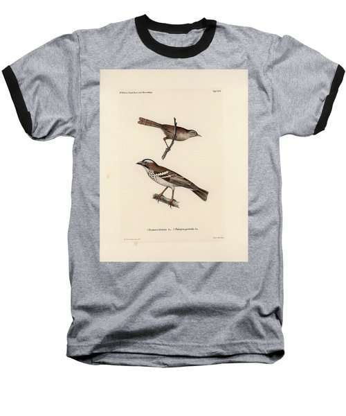 White-browed Sparrow-weaver And Grass Or Bush Warbler Baseball T-Shirt by J D L Franz Wagner