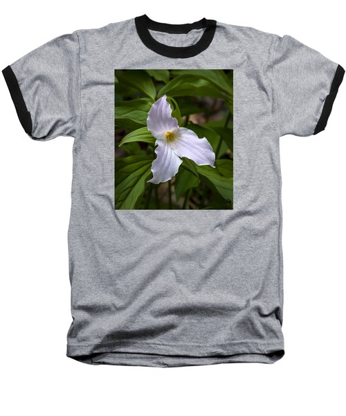 White Trillium Baseball T-Shirt by Tyson and Kathy Smith