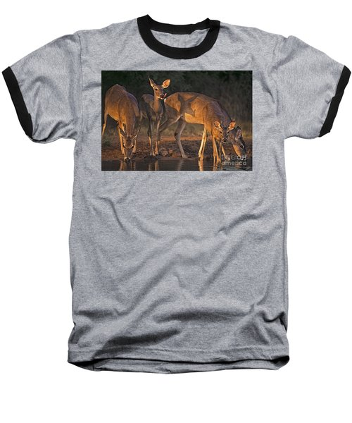 Baseball T-Shirt featuring the photograph Whitetail Deer At Waterhole Texas by Dave Welling
