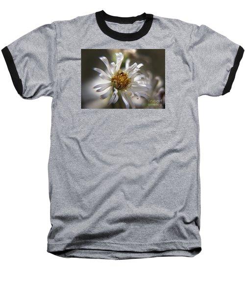 Baseball T-Shirt featuring the photograph Wild Aster by Yumi Johnson