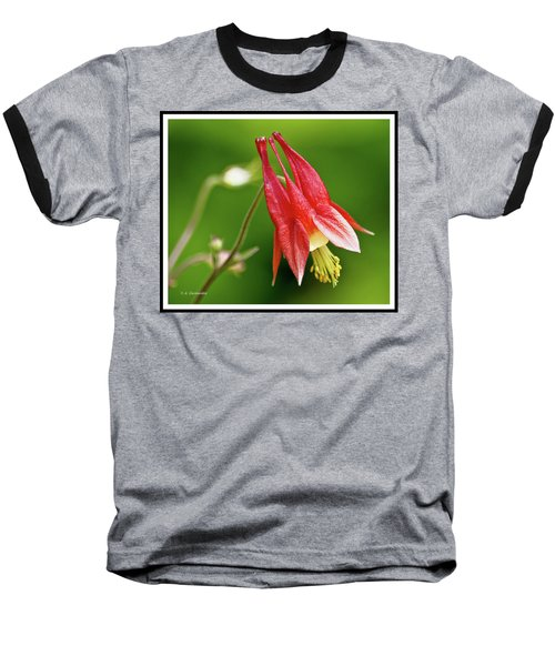 Wild Columbine Flower Baseball T-Shirt by A Gurmankin