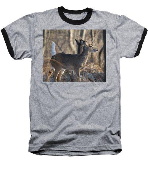 Wild Deer Baseball T-Shirt
