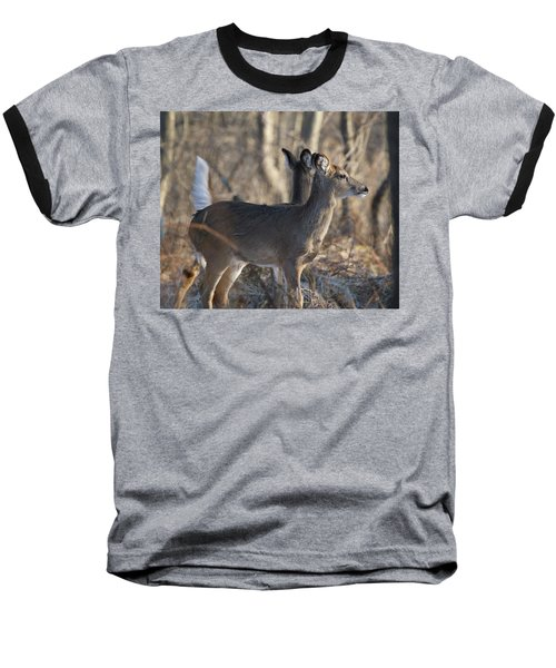 Wild Deer Baseball T-Shirt