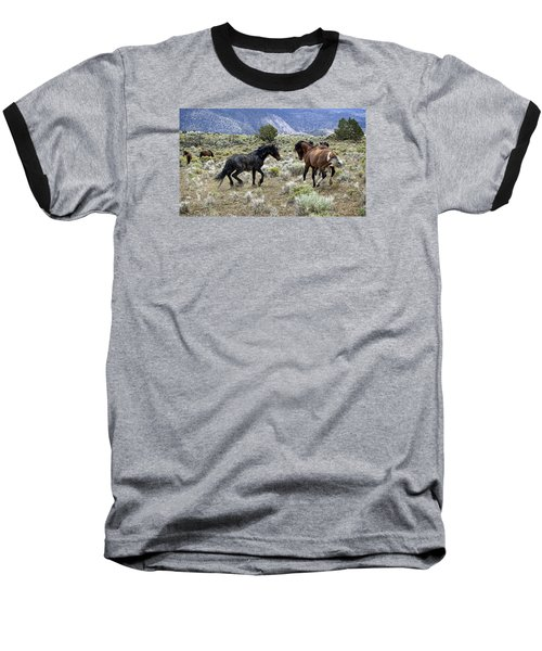Wild Mustang Stallions Fighting Baseball T-Shirt