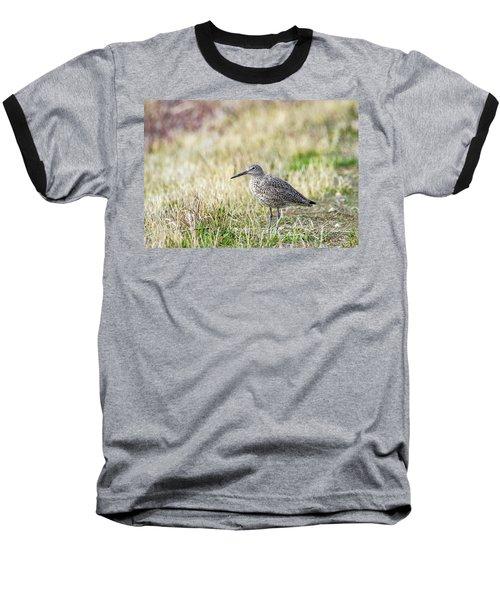 Willet Baseball T-Shirt