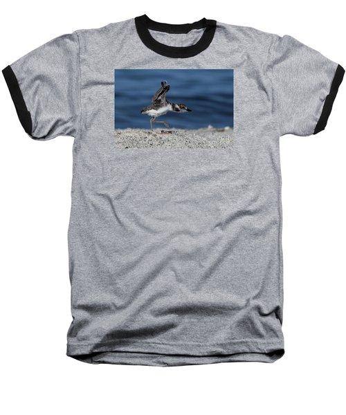 Wilson's Plover Baseball T-Shirt by Meg Rousher