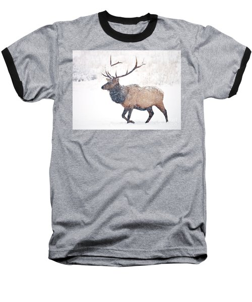 Baseball T-Shirt featuring the photograph Winter Bull by Mike Dawson