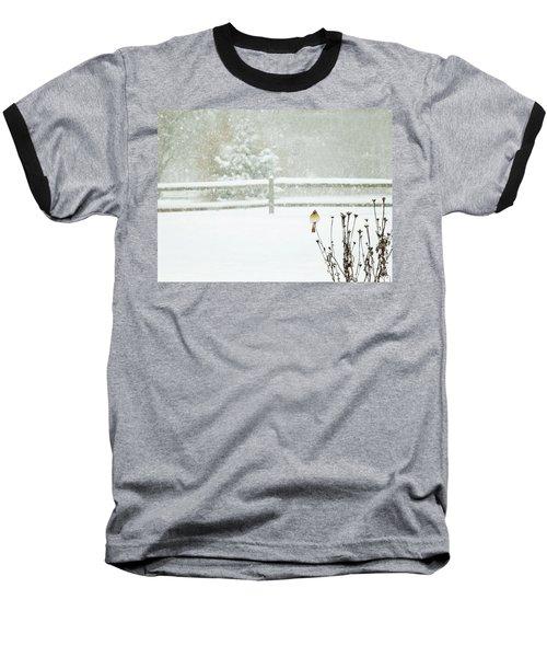 Winter Cardinal Baseball T-Shirt