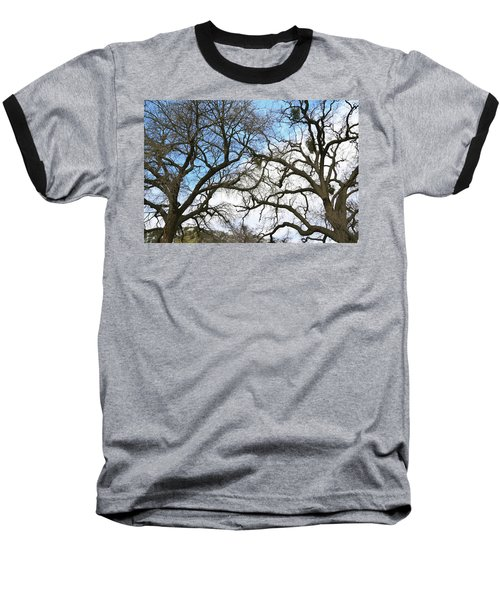 Baseball T-Shirt featuring the photograph Winter Trees At Fort Tejon Lebec California  by Floyd Snyder