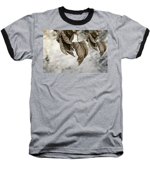Withered Leaves Baseball T-Shirt