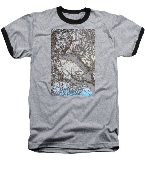 Witness Tree Baseball T-Shirt by Jesse Ciazza