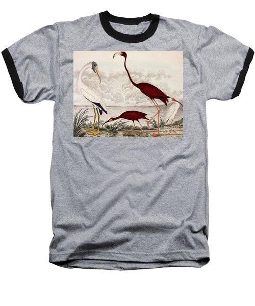 Wood Ibis, Scarlet Flamingo, White Ibis Baseball T-Shirt