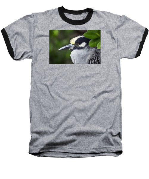 Yellow-crowned Night Heron Baseball T-Shirt