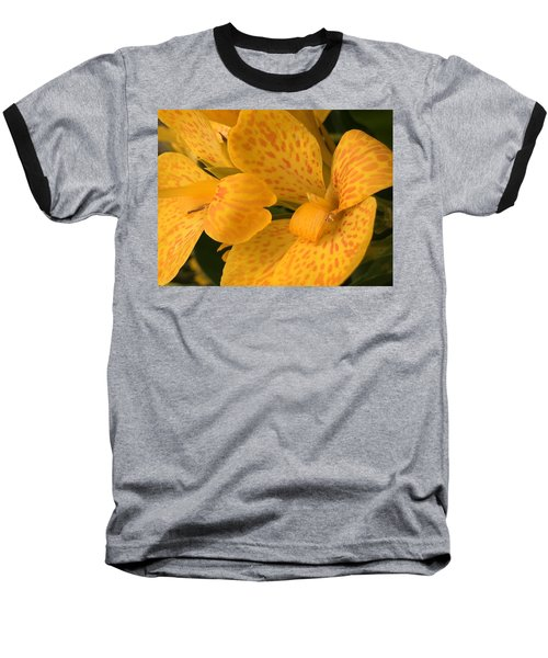 Yellow Lily Baseball T-Shirt by Kay Gilley