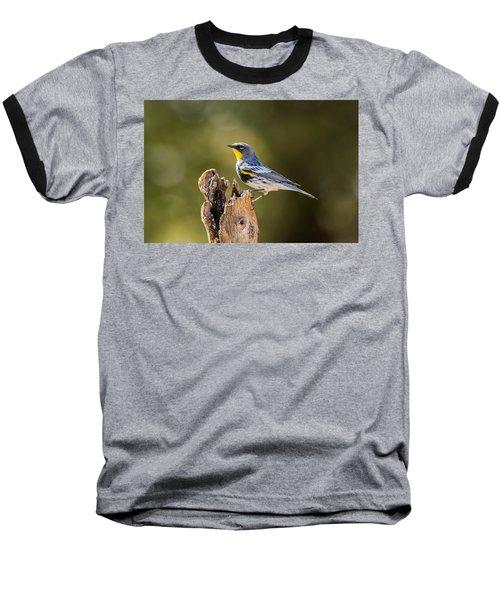 Yellow-rumped Warbler Baseball T-Shirt by Tam Ryan