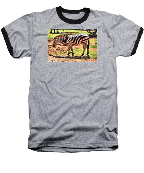 Zebra Baseball T-Shirt by James Potts