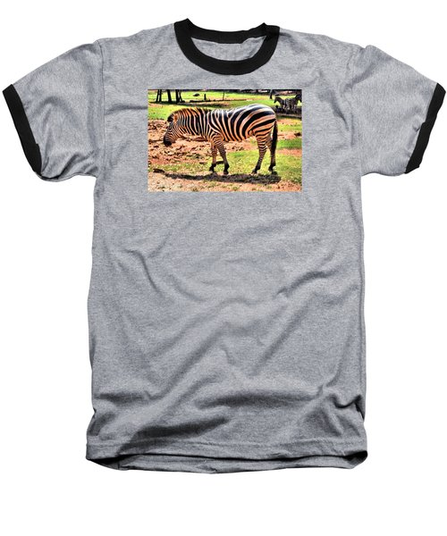 Zebra Baseball T-Shirt