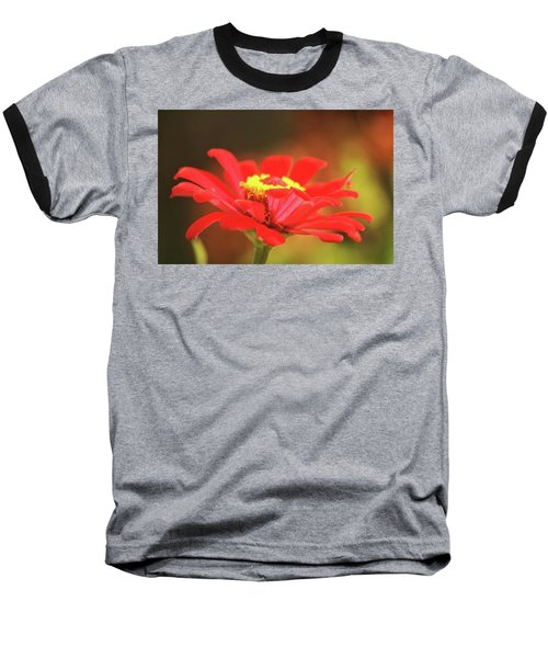Baseball T-Shirt featuring the photograph Zinnia by Donna G Smith