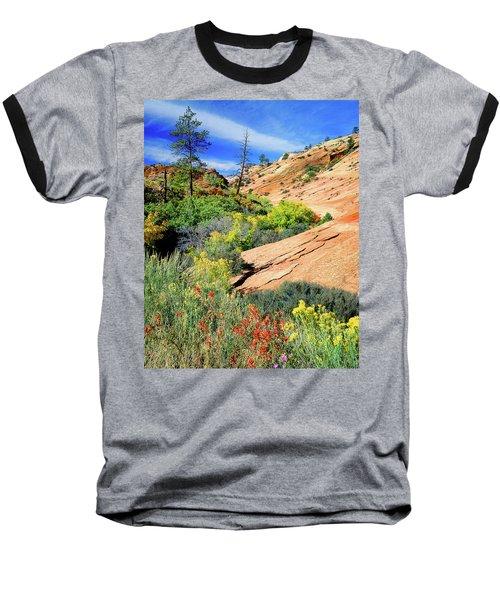 Zion Slickrock Baseball T-Shirt