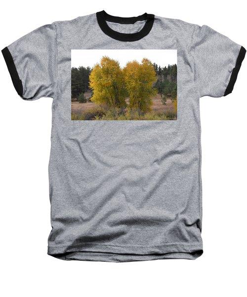 Aspen Trees In The Fall Co Baseball T-Shirt