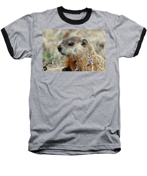 Woodchuck Calverton New York Baseball T-Shirt