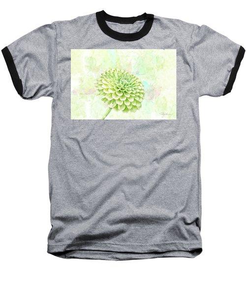 10891 Green Chrysanthemum Baseball T-Shirt by Pamela Williams