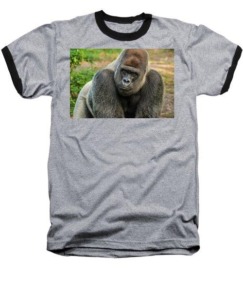 10898 Gorilla Baseball T-Shirt by Pamela Williams