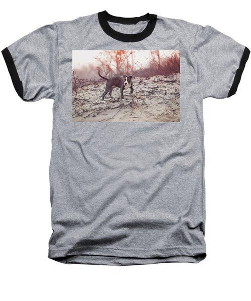 Baseball T-Shirt featuring the photograph American Pitbull  by Peter Lakomy