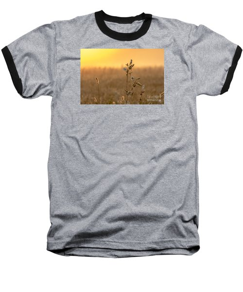 Meadow Flowers Baseball T-Shirt by Odon Czintos