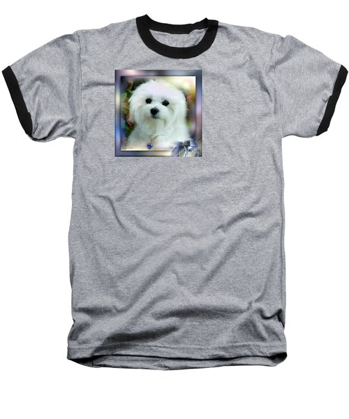 Hermes The Maltese Baseball T-Shirt