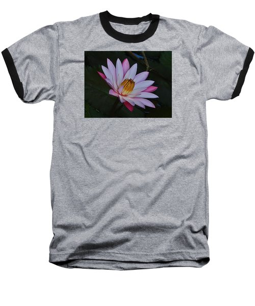 Water Lilly Baseball T-Shirt by Ronald Olivier