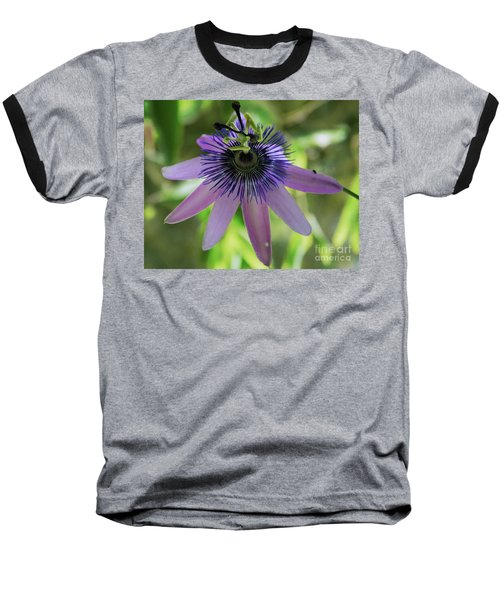 Purple Passiflora Baseball T-Shirt by Elvira Ladocki