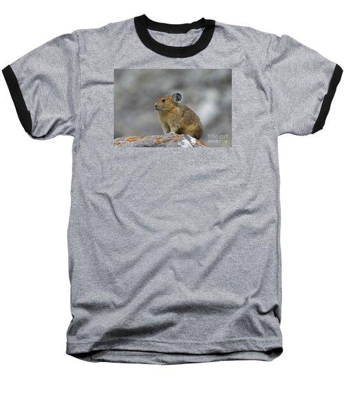 151221p238 Baseball T-Shirt