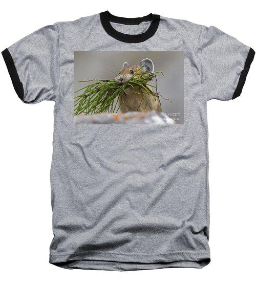 Pika With A Mouthful  Baseball T-Shirt