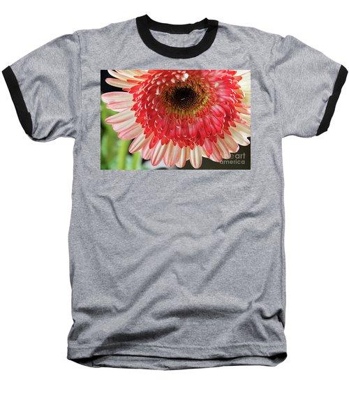 Nice Gerber Baseball T-Shirt