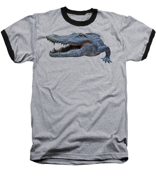 1998 Bull Gator Up Close Transparent For Customization Baseball T-Shirt by D Hackett
