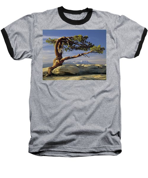 1m6701 Historic Jeffrey Pine Sentinel Dome Yosemite Baseball T-Shirt