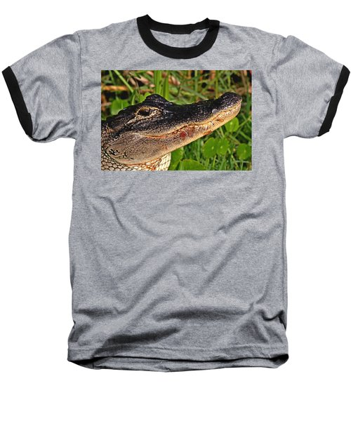 American Alligator Baseball T-Shirt